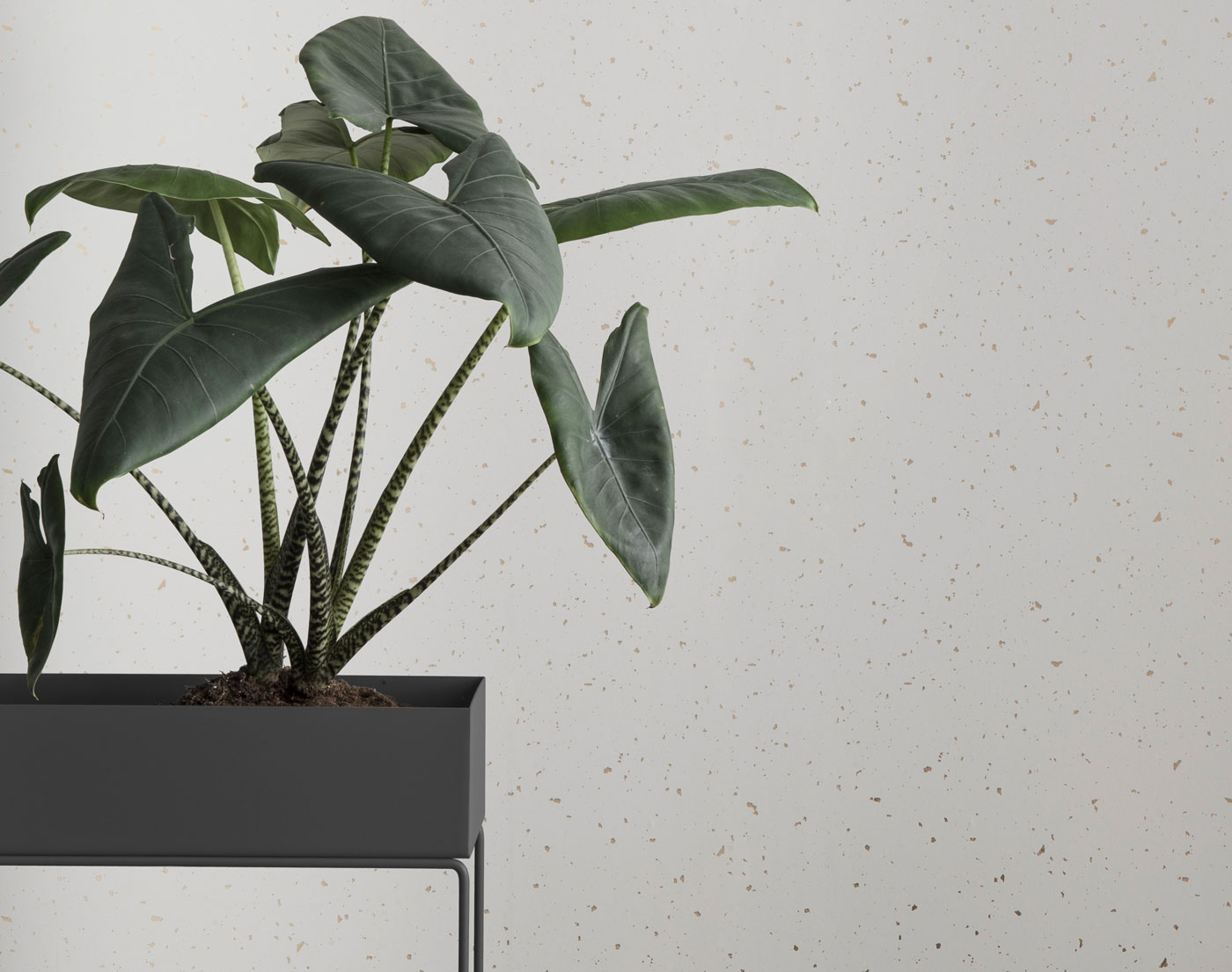 Plant Box od ferm living