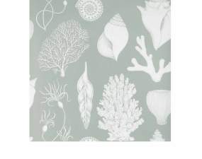 Tapeta Katie Scott Shells, aqua