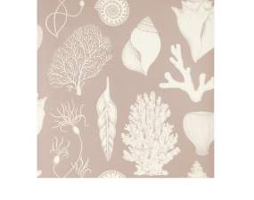 Tapeta Katie Scott Shells, dusty rose